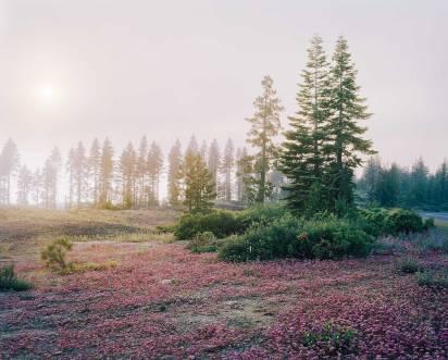 Sunset I, 2008