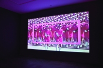 Pink Army/ Pink Rectangle (installation view)