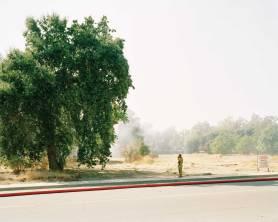 Smoking, 2009