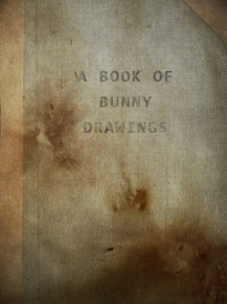 The Bunny Book Cover