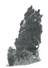 Ash Column #8