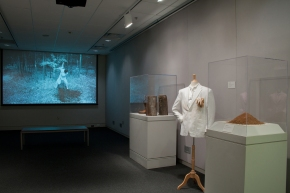 Adopted Obstructions Installation View, Georgia Museum of Art, 2013