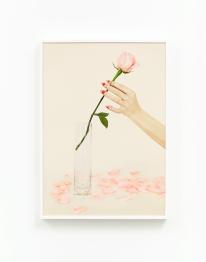 Uh‐Huh (Rose Petals)